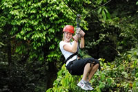 Canopy (tyrolienne) -Costa Rica