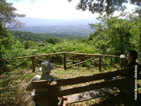 Bosque del nino - Costa Rica
