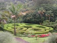 Jardin botanique - Costa Rica