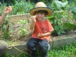 Projet de conservation de l'environnement - Costa Rica