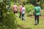 Aide humanitaire- Costa Rica